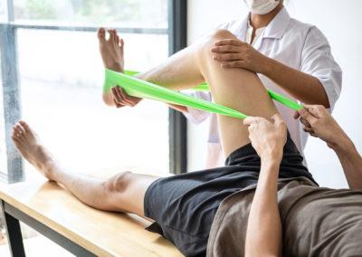 Fisioterapeutas y Quiromasajistas